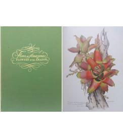 Flores do Amazonas ( Flowers of Amazonas ) - Margaret Mee.