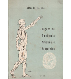 Noções de Anatomia Artística e Proporções
